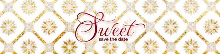 sweet save the date wedding video